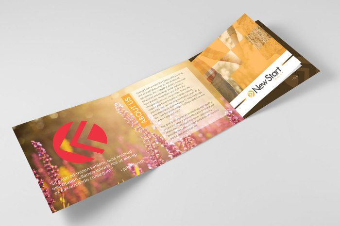 Brochure_Cover_Inside